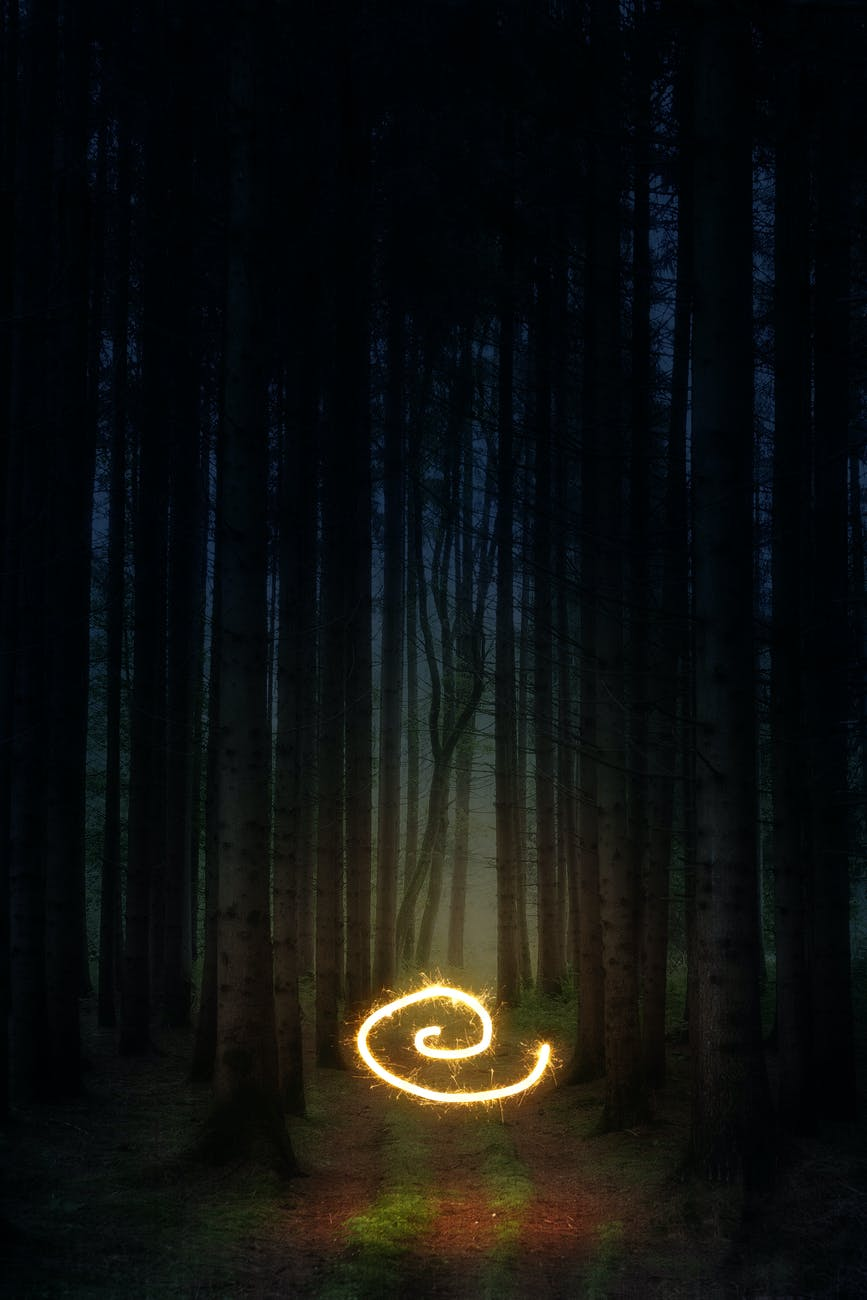A spiral of sparkling light in the middle of a dark forest.