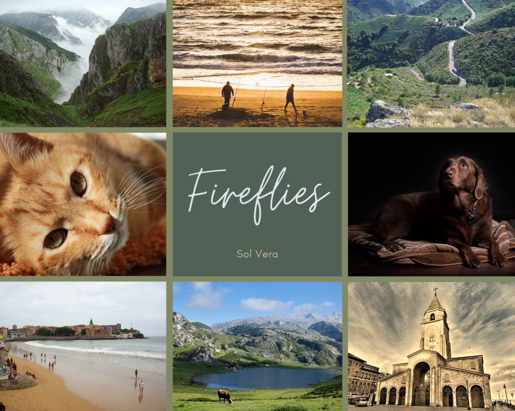 """A collage with 9 different squares.  First row, left to right: Fog lifting among green mountains in Asturias. Two men at the beach. A hill in Galicia, covered in green, with a narrow path.  Second row, left to right: A ginger cat looking at the camera with golden eyes. The central square has """"Fireflies. Sol Vera"""" written in fancy letters on top of a dark green square that contrasts with the lighter olive background. A brown Labrador is laying on its bed and looking to the left.  Third row, left to right: San Lorenzo beach in Gijón with the church and the green mound in the background. A small, hidden mountain lake. The San Pedro church that appeared in the background on the image of the beach."""